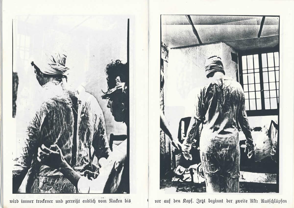 1983 Der Schlupfakt der Parkettlibelle in Le Landeron